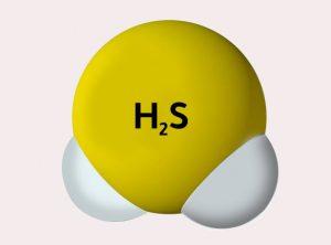 gas asam belerang H2S